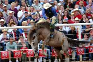 Rodeo Pictures | Diamond P Photography by James Gault of Park City Utah